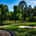 magnolia-golf-course-1613270_1280
