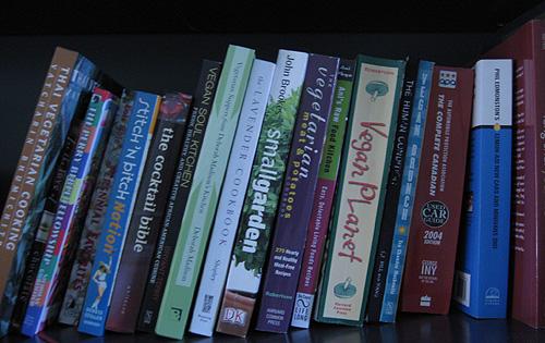 bd_bookshelf01