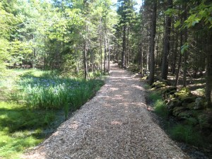 Woodland Property management VT
