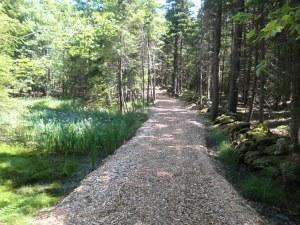 Woodland Property management VT