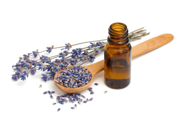 lavender petals oil