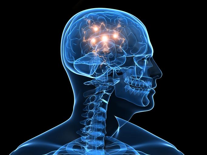 brain activity illustration
