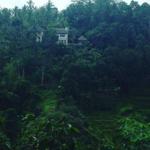 Believe In The Beauty Of Bali