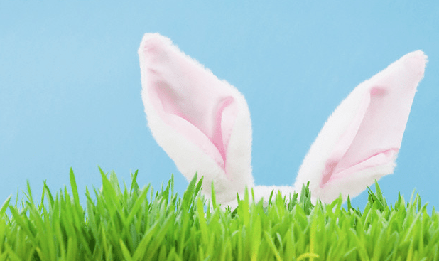 A pair of pink bunny ears sitting in the grass