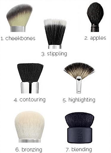 7 makeup brushes