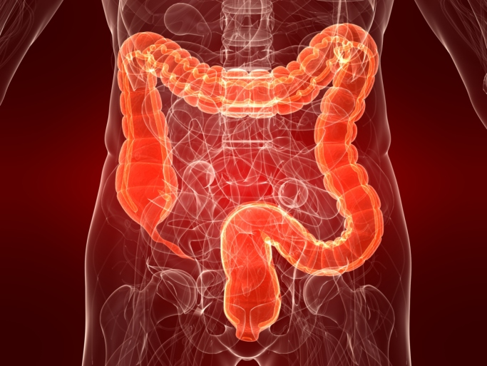 colon illustration