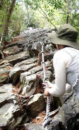 輕鬆愜意的登山步道? | Obaivei