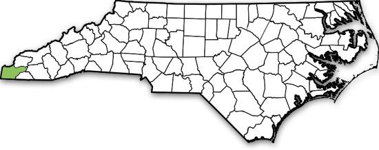 Cherokee County North Carolina Process Server & Resources