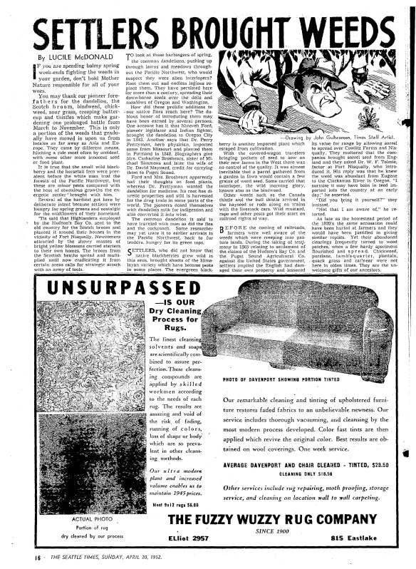 1952-04-20 Seattle Daily Times full page