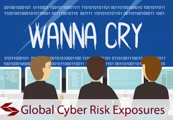 global cyber risk insurance