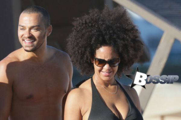 10 Incredible Facts About Jesse Williams Amazing Wife