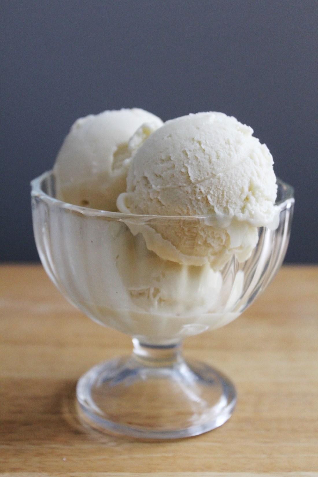 Dairy Free Coconut Milk Frozen Custard