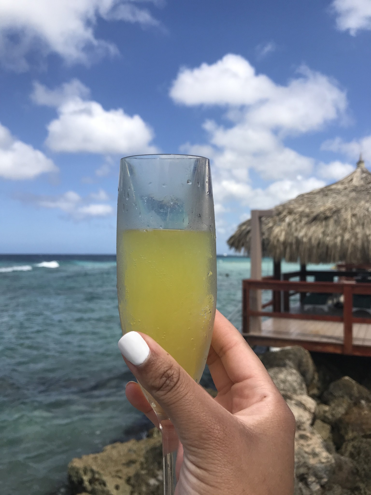 De Palm Island Aruba-6