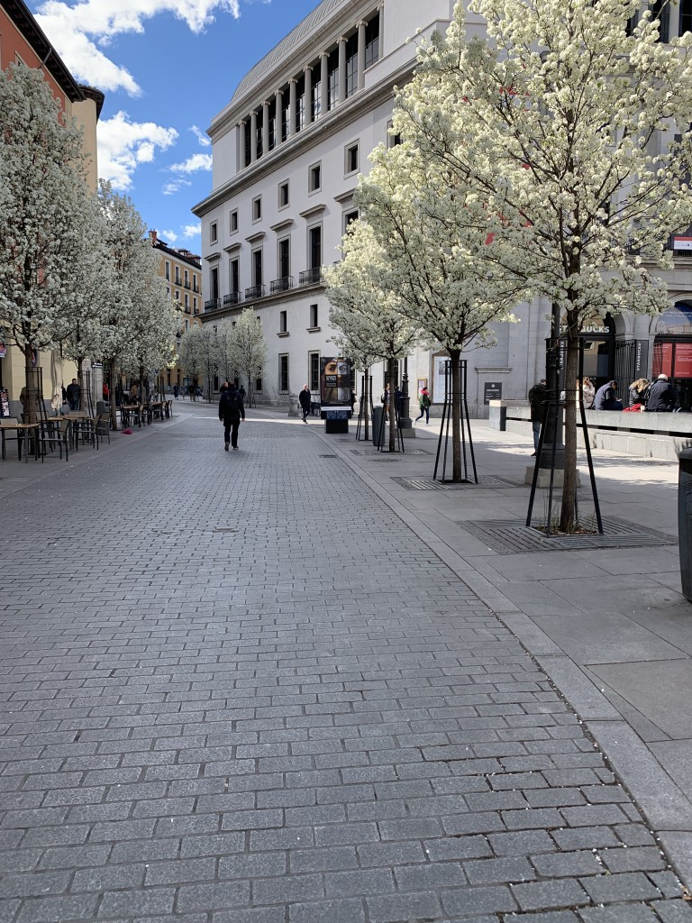 12 Things to Do and See in Madrid-58