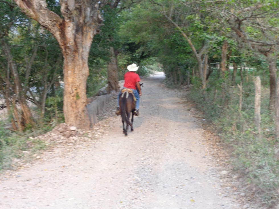 Horseback to Pintada