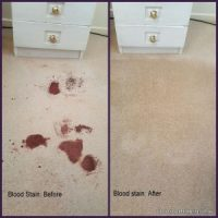 How to get blood stains out of carpet - Carpet Stain Removal