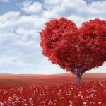 Eat Black Gram to Lower Cholesterol, Strengthen Heart
