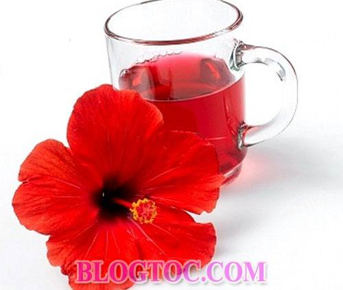Uses and uses hibiscus flowers in hair beauty 1