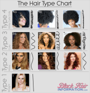 hair type classification