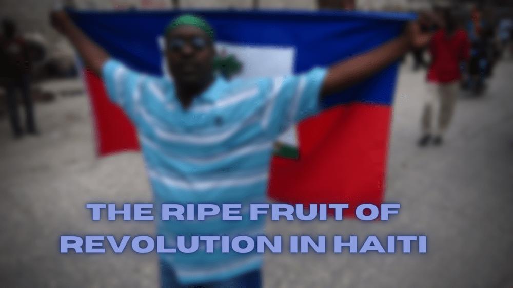 The ripe fruit of revolution in haiti
