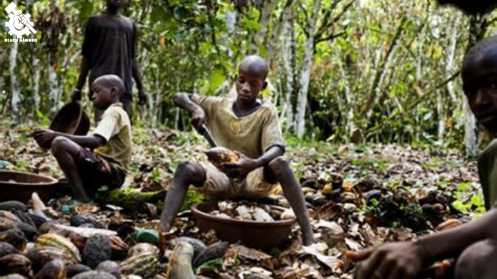 More disgusting enslavement of African children by Nestle