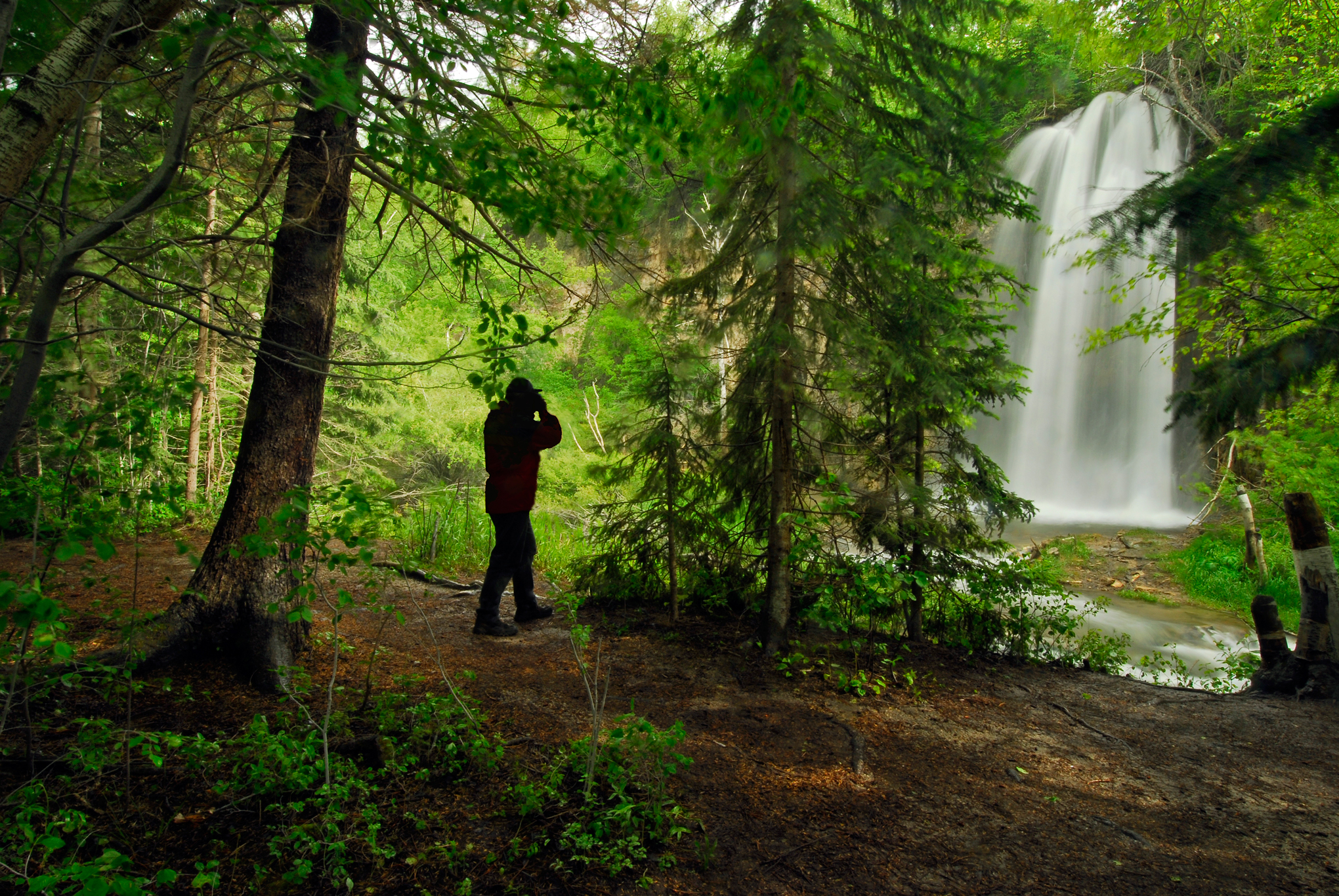 Four Hours In Spearfish Canyon Your Super Quick Guide