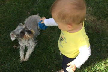 Dog Meets Baby