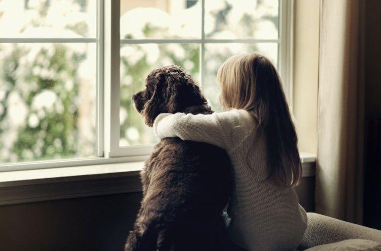 Girl and Dog Window