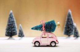 Toy Car Hauling Tree