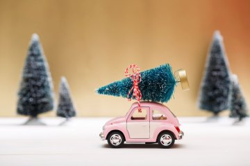Toy Car Hauling Tree