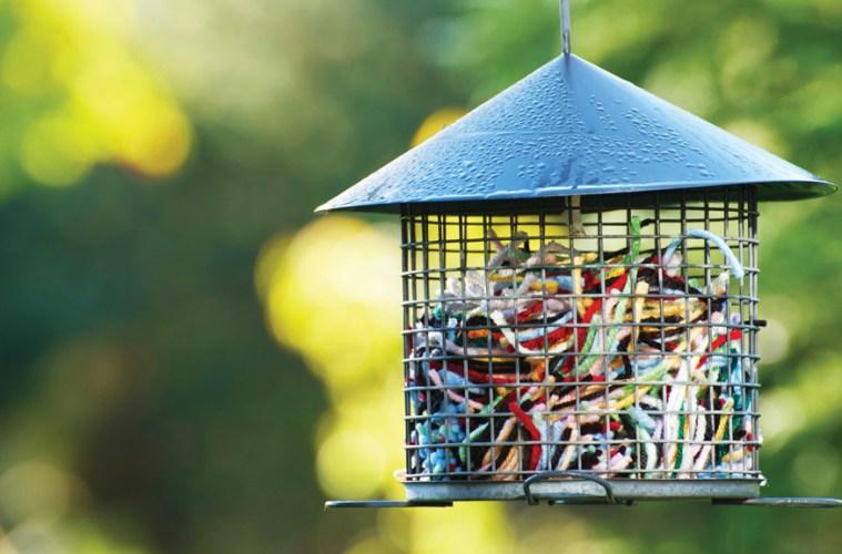 Bird Feeder String