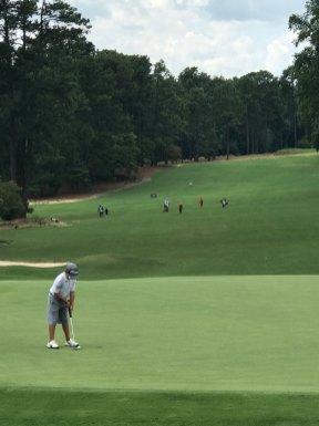 Vince Golf Course