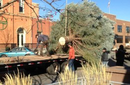 Main Street Square Christmas Tree Hauling