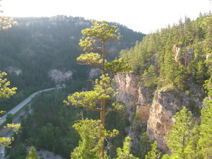 Spearfish Canyon - View from Community Cave