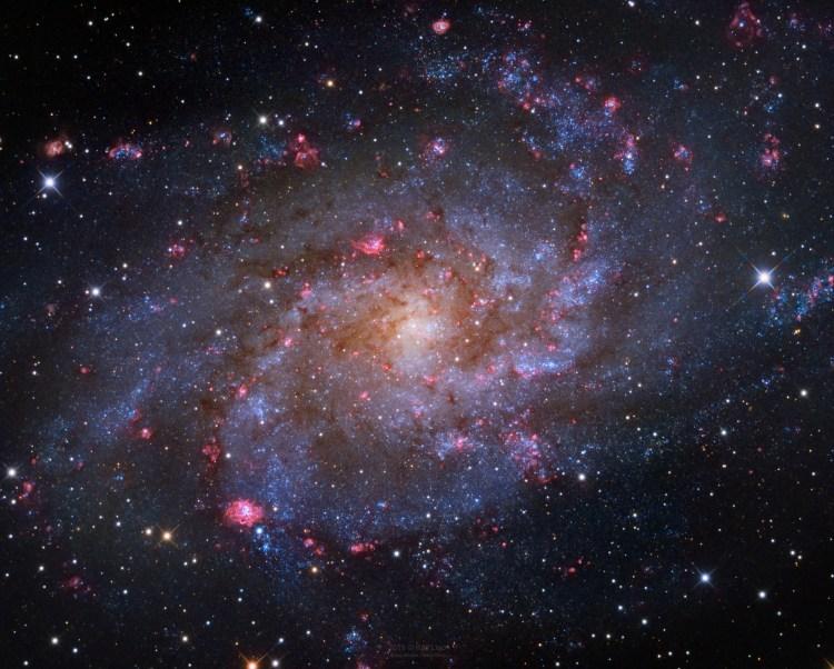The spiral galaxy M33.