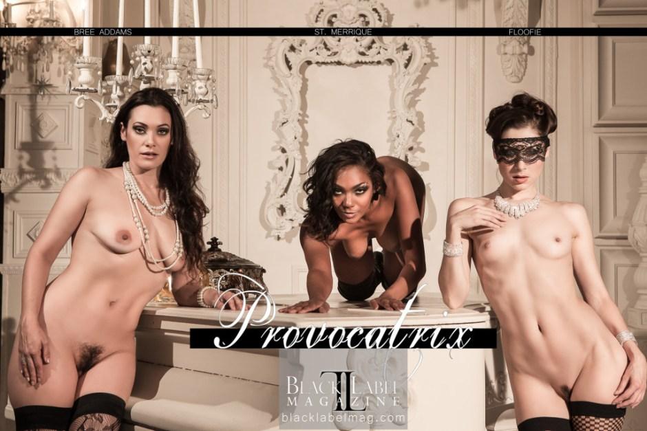 black label magazine, black label, black label beauties Nude Art Magazine, sexy photography, nude woman, erotic, Black Label Beauties, Verronica Kirei, lingerie, naked, erotic art