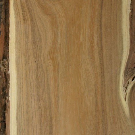 Locust Tree Wood Uses