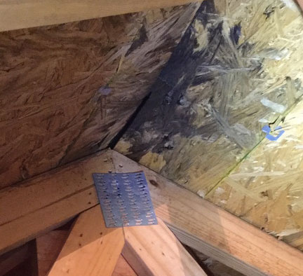 How to Remove Black Mold from Wood - Removal Guide