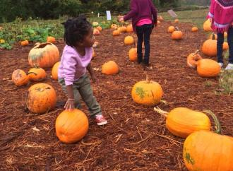 Where To Go: Top 5 Fall Time Activities For Kids In Georgia