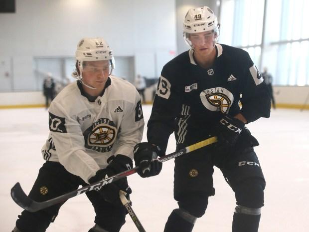 Bruins development camp
