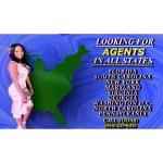 Credit Repair Agent