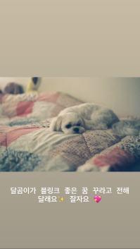 BLACKPINK Jisoo Instagram Story 2 July 2018 Sooyaaa