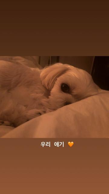 BLACKPINK Jisoo Instagram Story July 15, 2018 -8