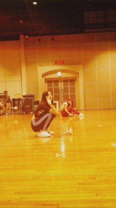 BLACKPINK-Jisoo-Instagram-Story-with-Rose-19-July-2018-sooyaaa__