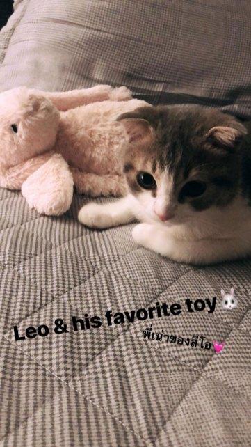 BLACKPINK-Lisa-Instagram-Story-15-July-2018-Leo