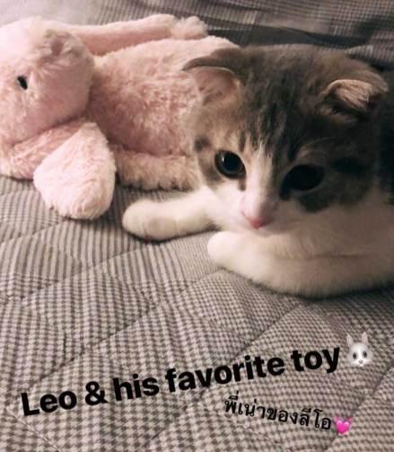 COVER-BLACKPINK-Lisa-Instagram-Story-15-July-2018-Leo