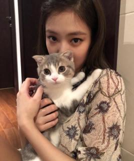1-BLACKPINK Jennie Instagram Photo 16 September 2018 Leo Cat