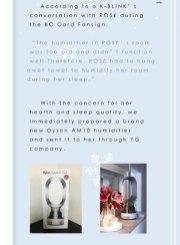 2-RoseChinaBar-Humidifier