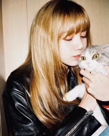 1-BLACKPINK Lisa cat Leo