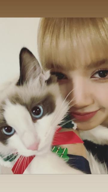 BLACKPINK Lisa Instagram and Insta Story Update, December 26